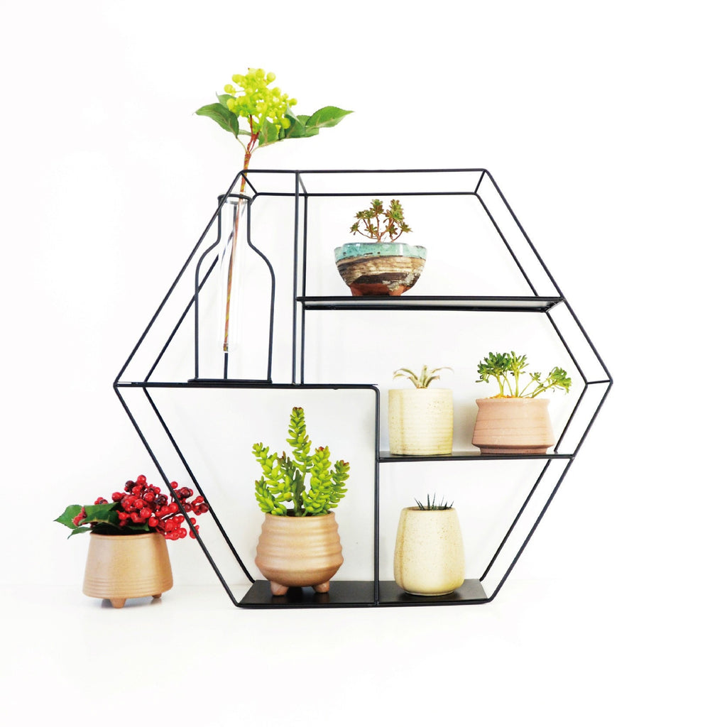 shelves Metal Indoor/Outdoor Hanging Shelf