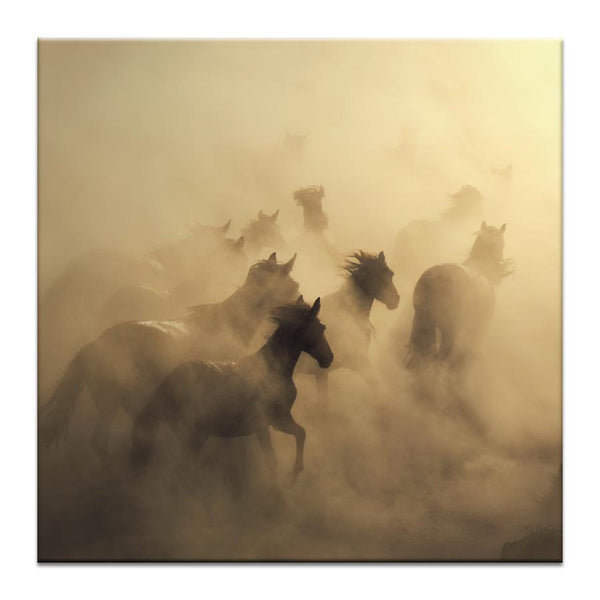 Migration of Horses Photograph Artwork Home Decor Wall Art at Lifeix Design