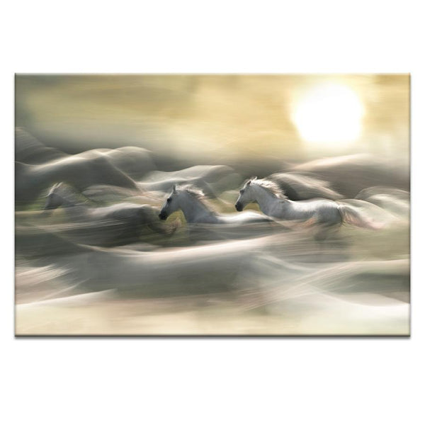 Morning Dream Photograph Artwork Home Decor Wall Art at Lifeix Design