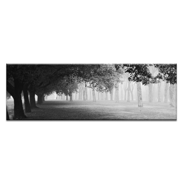 Morning Fog Photograph Artwork Home Decor Wall Art at Lifeix Design