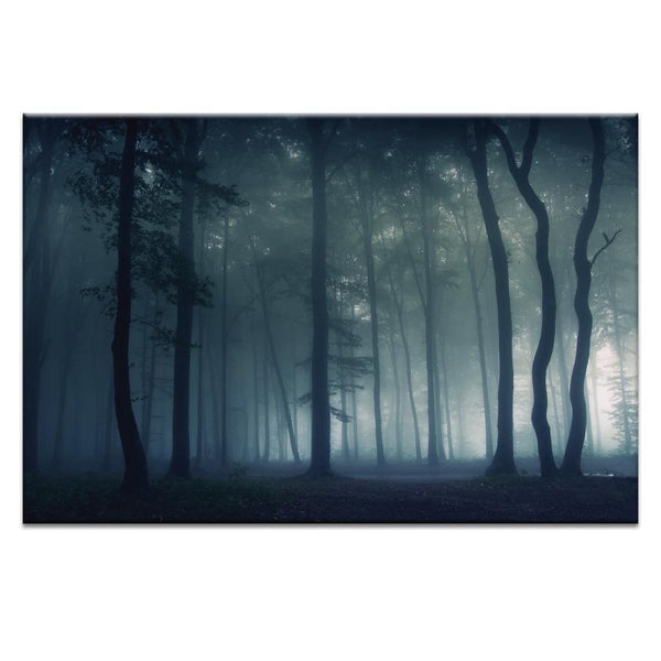 Mysterious Forest Photograph Artwork Home Decor Wall Art at Lifeix Design