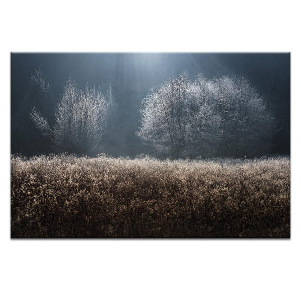 Mystical Photograph Artwork Home Decor Wall Art at Lifeix Design