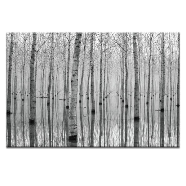 Novemeber 2014 Photograph Artwork Home Decor Wall Art at Lifeix Design