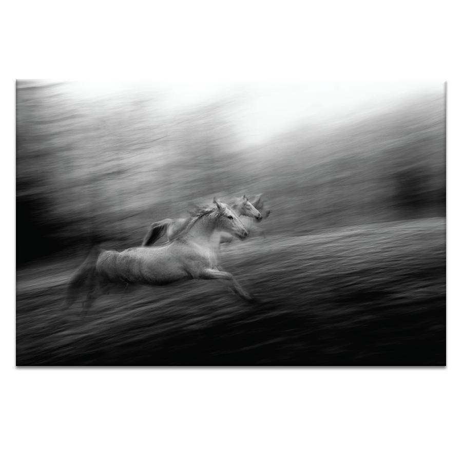 Synchro Photograph Artwork Home Decor Wall Art at Lifeix Design