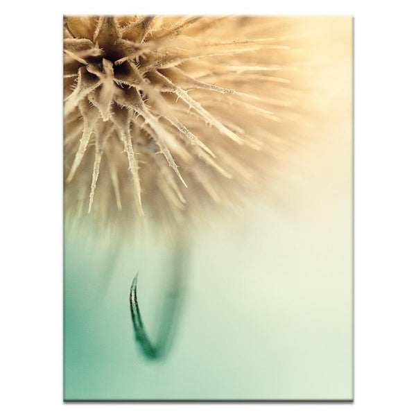 The Claw Photograph Artwork Home Decor Wall Art at Lifeix Design