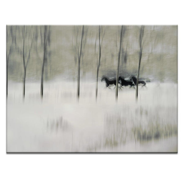 Three Photograph Artwork Home Decor Wall Art at Lifeix Design