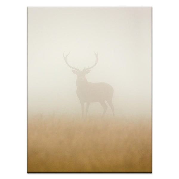 Through The Fog Photograph Artwork Home Decor Wall Art at Lifeix Design