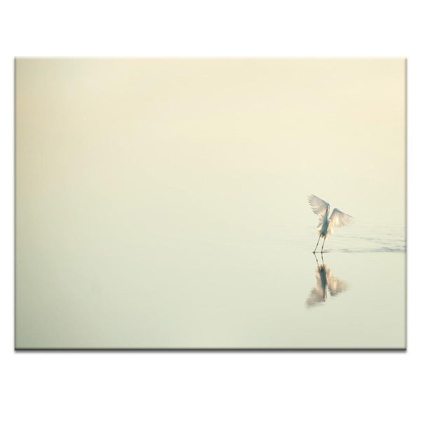 White over white Photograph Artwork Home Decor Wall Art at Lifeix Design