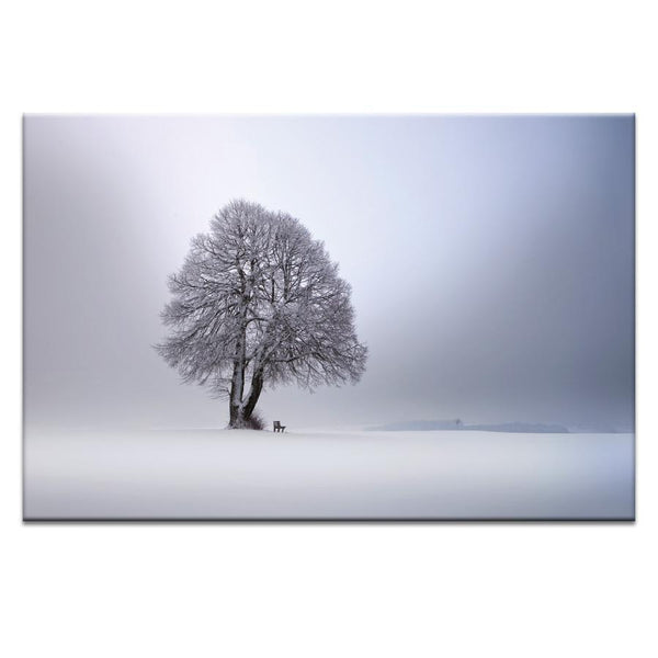 Winter light Photograph Artwork Home Decor Wall Art at Lifeix Design