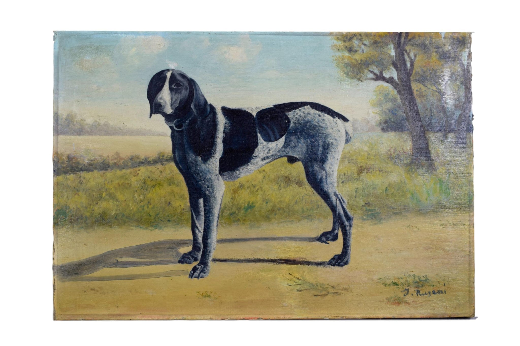 French Pointer Dog Portrait - Charmantiques