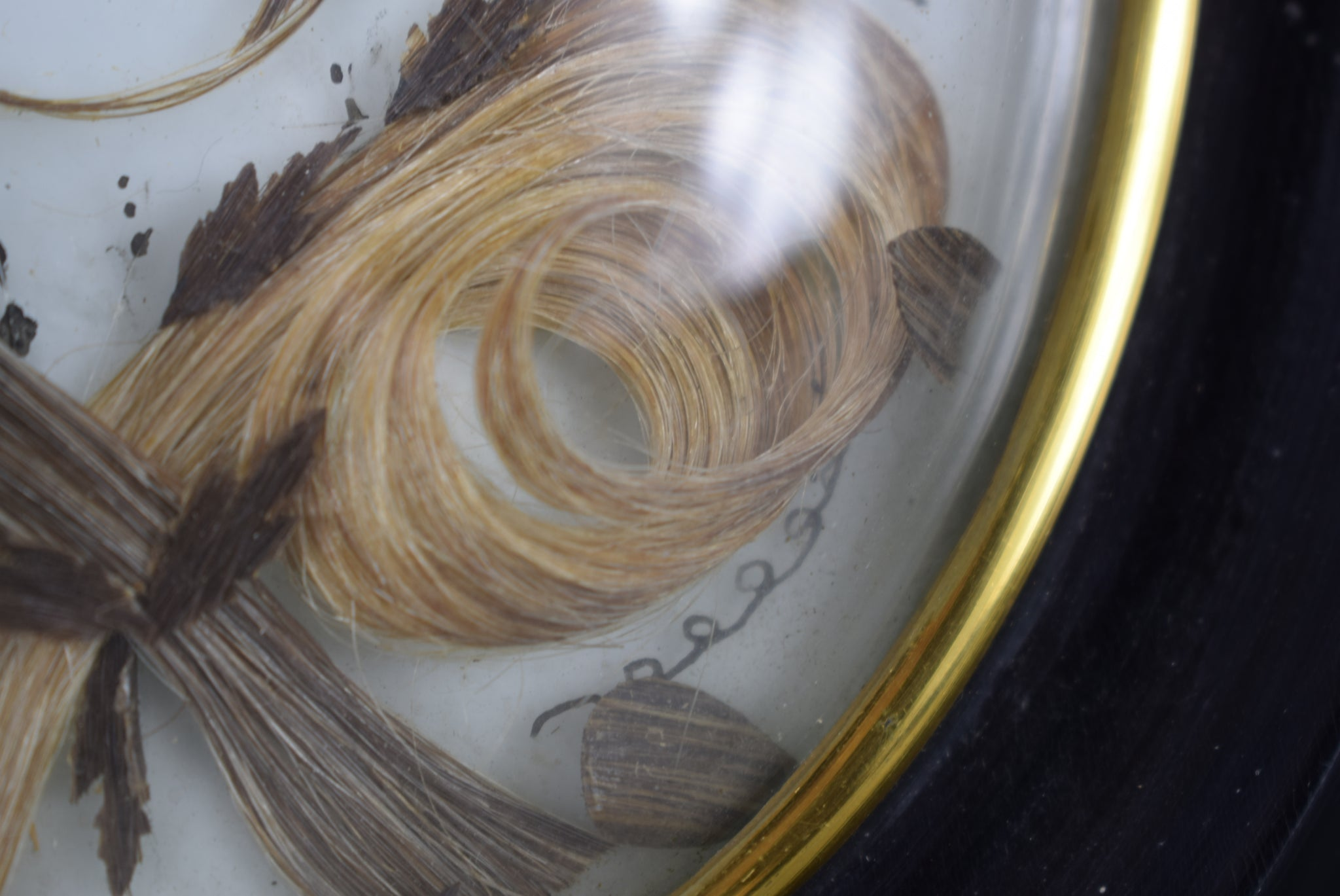 Hair Art Memento M - Charmantiques