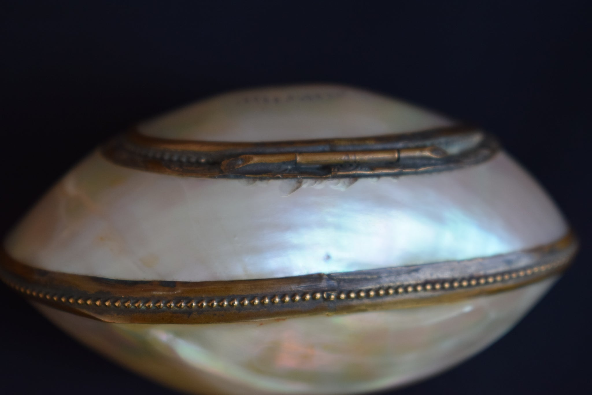 Victorian Shell Case - Charmantiques