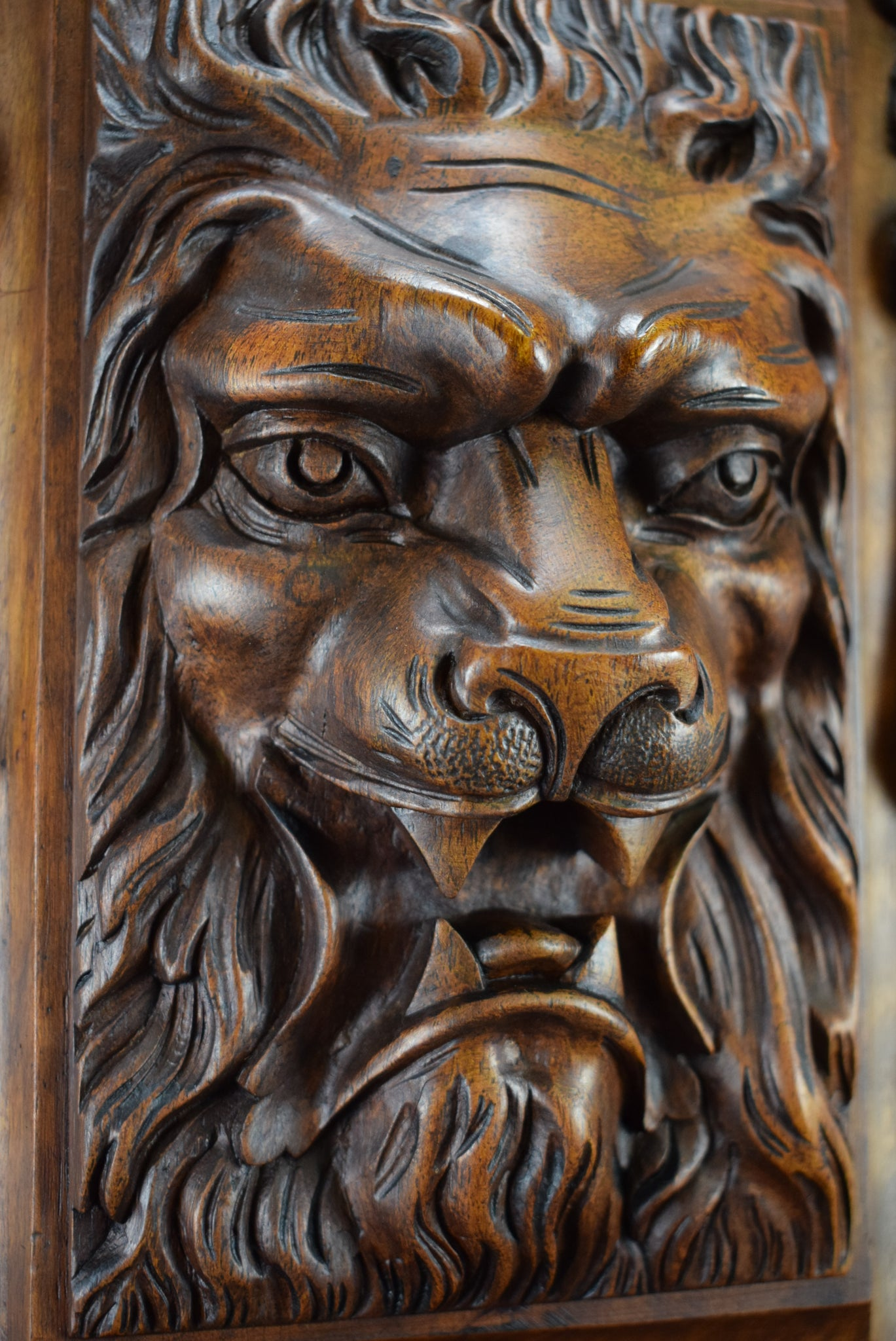 Lion Wood Door - Charmantiques