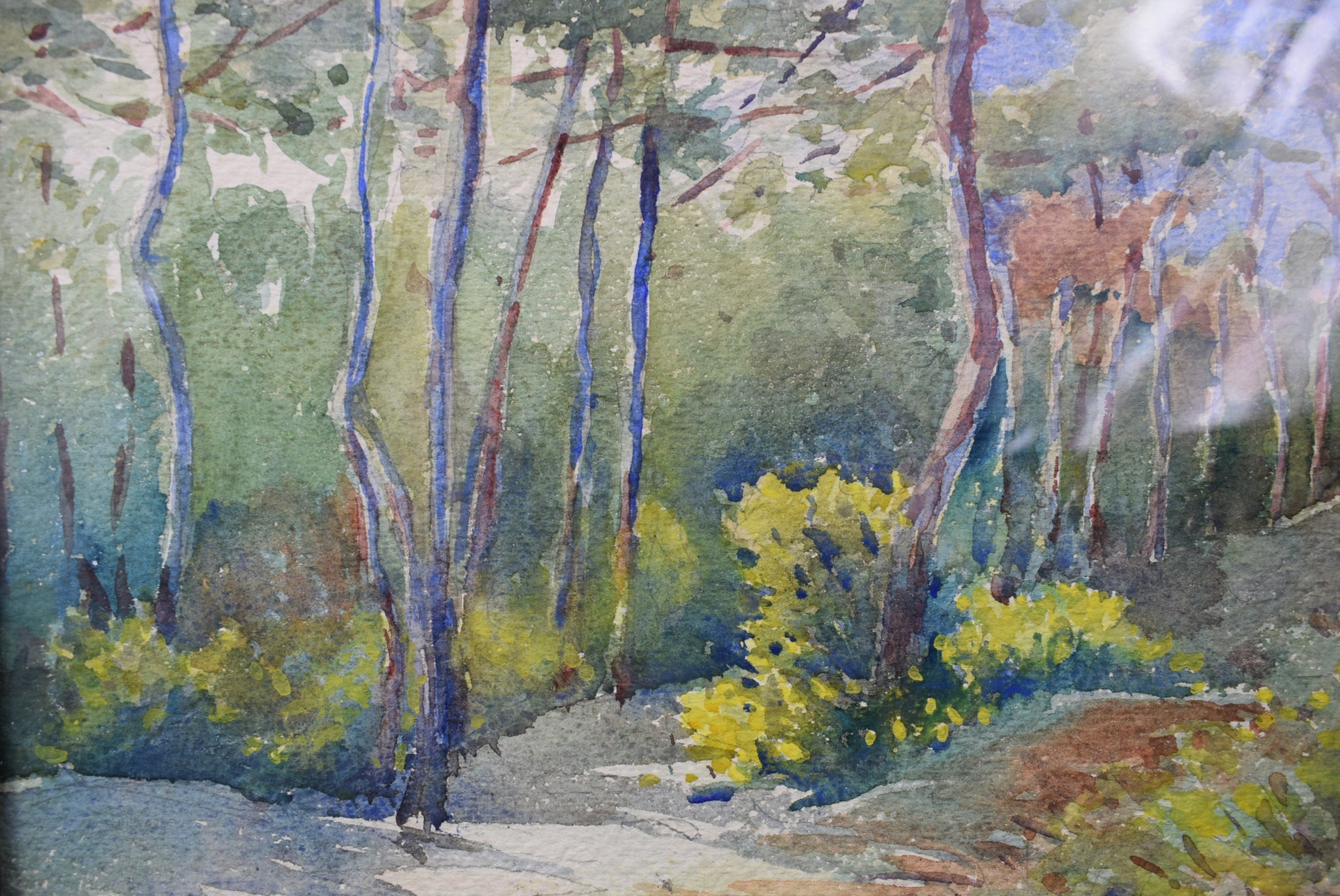 Forest Watercolor - Charmantiques