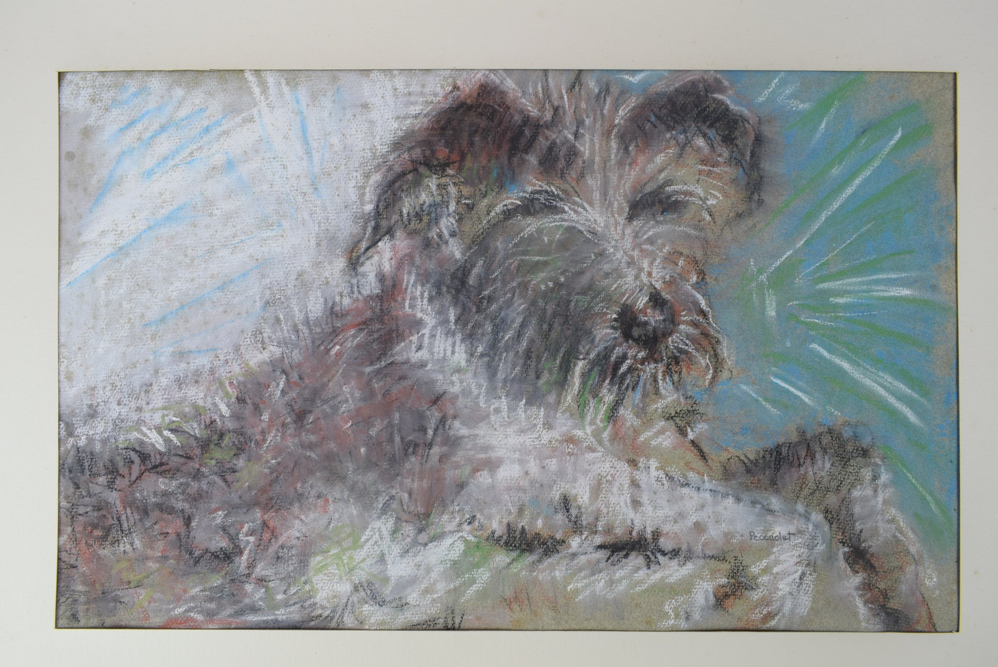 Peccadet Dog Portrait Drawing - Charmantiques