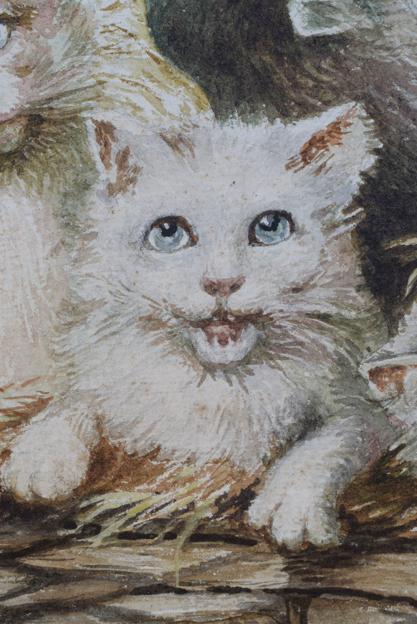 Kitten Portrait in a Basket to Paris Painting, French Antique Watercolor on Paper Signed MJ Peiffer, Cat Portrait Wall Art, French Antiques