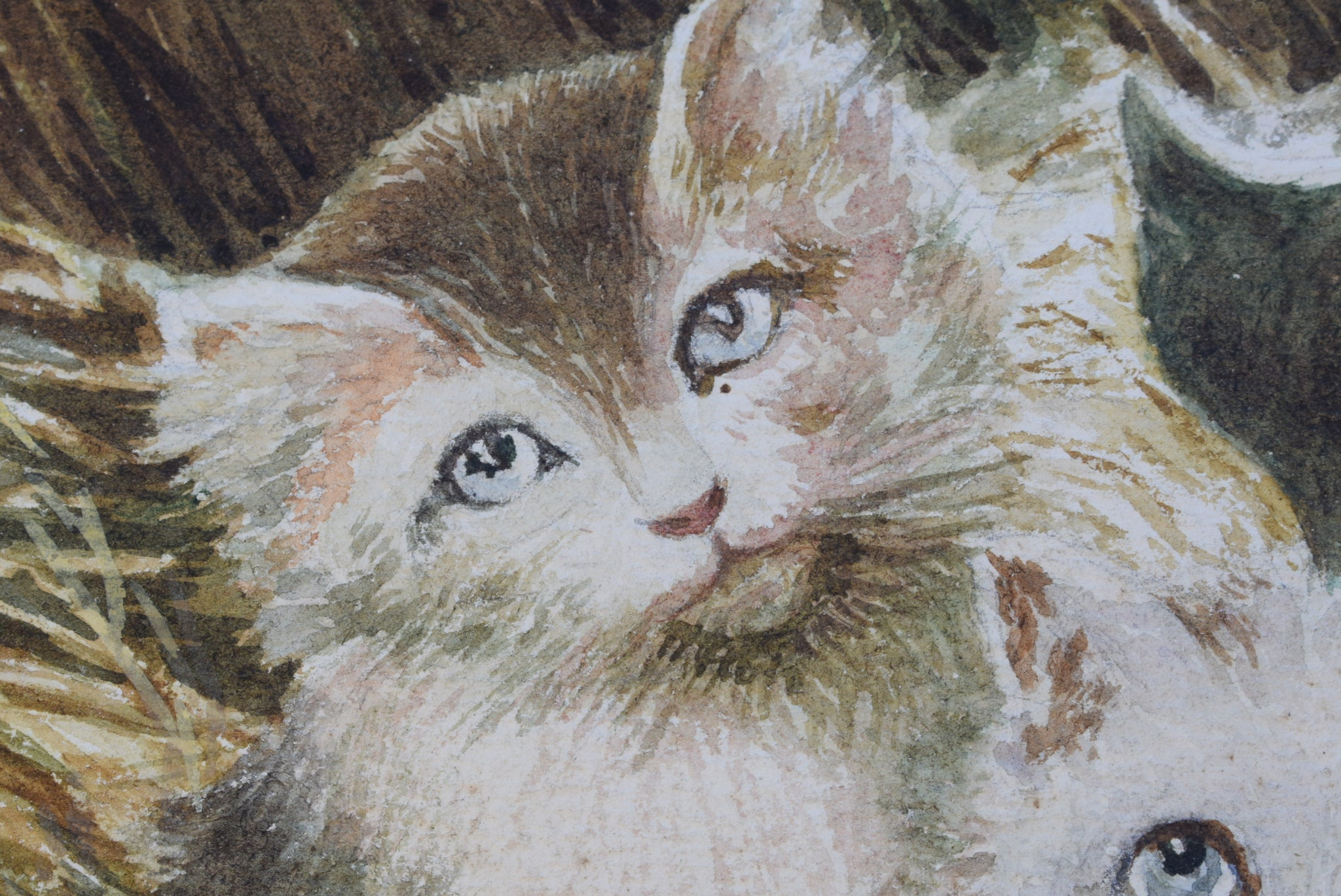 Kitten Watercolor - Charmantiques
