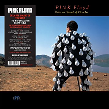 Pink Floyd - Delicate Sound Of Thunder - Remastered Reissue - 2 x Vinyl LP
