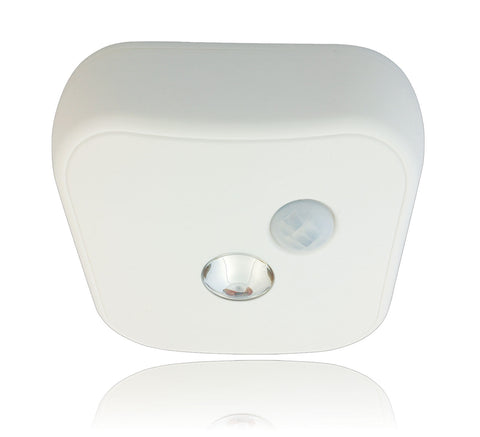 Ceiling LED Motion Sensor Light