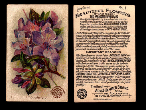 Beautiful Flowers New Series You Pick Singles Card #1-#60 Arm & Hammer 1888 J16 #1 Rhododendron  - TvMovieCards.com