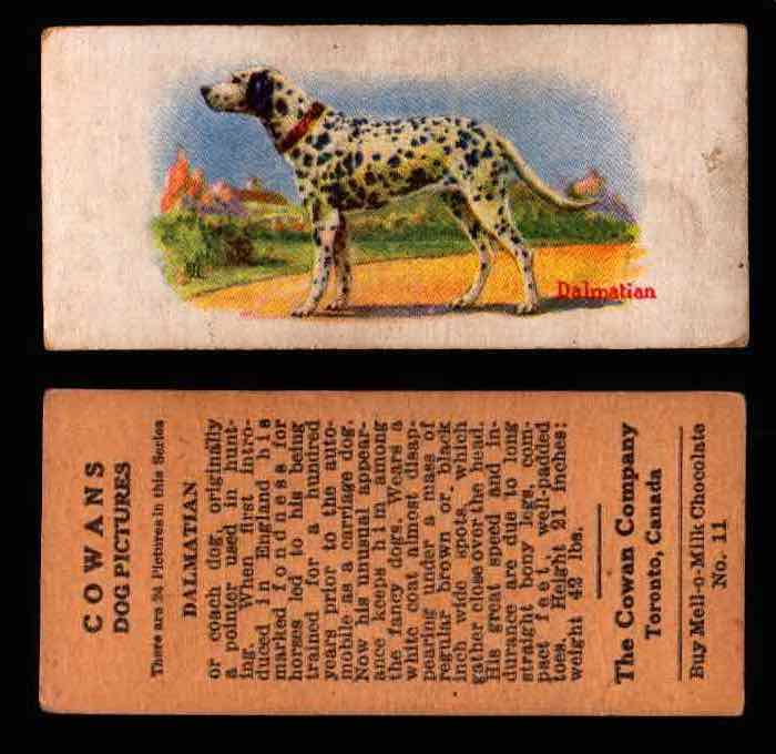 1929 V13 Cowans Dog Pictures Vintage Trading Cards You Pick Singles #1-24 #11 Dalmatian  - TvMovieCards.com