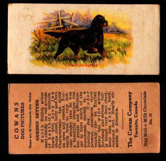 1929 V13 Cowans Dog Pictures Vintage Trading Cards You Pick Singles #1-24 #13 Gordon Setter  - TvMovieCards.com
