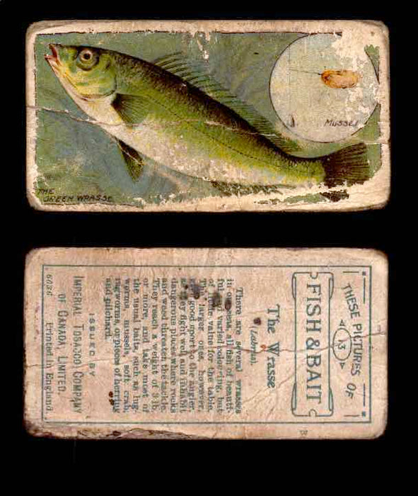 1910 Fish and Bait Imperial Tobacco Vintage Trading Cards You Pick Singles #1-50 #13 The Wrasse  - TvMovieCards.com