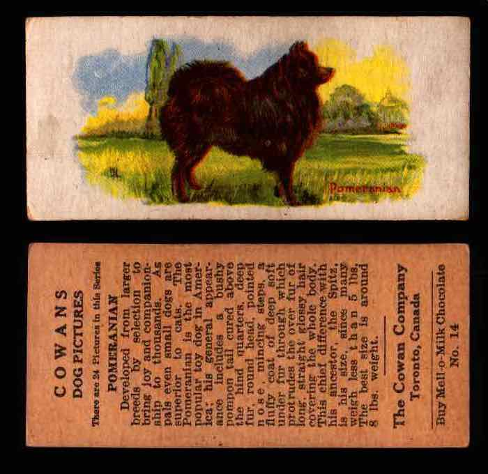 1929 V13 Cowans Dog Pictures Vintage Trading Cards You Pick Singles #1-24 #14 Pomeranian  - TvMovieCards.com