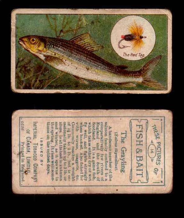 1910 Fish and Bait Imperial Tobacco Vintage Trading Cards You Pick Singles #1-50 #14 The Grayling  - TvMovieCards.com