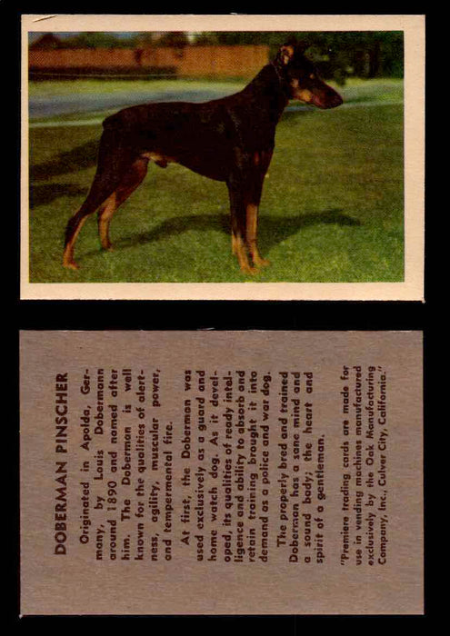 1957 Dogs Premiere Oak Man. R-724-4 Vintage Trading Cards You Pick Singles #1-42 #15 Doberman Pinscher  - TvMovieCards.com