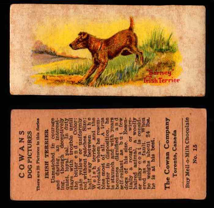 1929 V13 Cowans Dog Pictures Vintage Trading Cards You Pick Singles #1-24 #15 Irish Terrier  - TvMovieCards.com