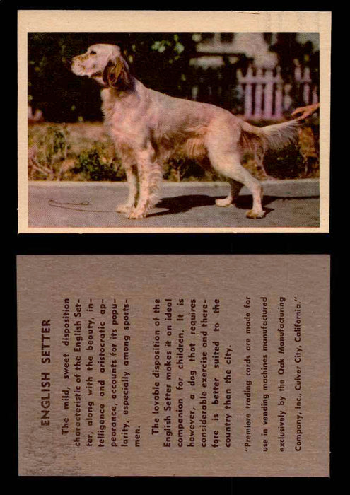1957 Dogs Premiere Oak Man. R-724-4 Vintage Trading Cards You Pick Singles #1-42 #16 English Setter  - TvMovieCards.com