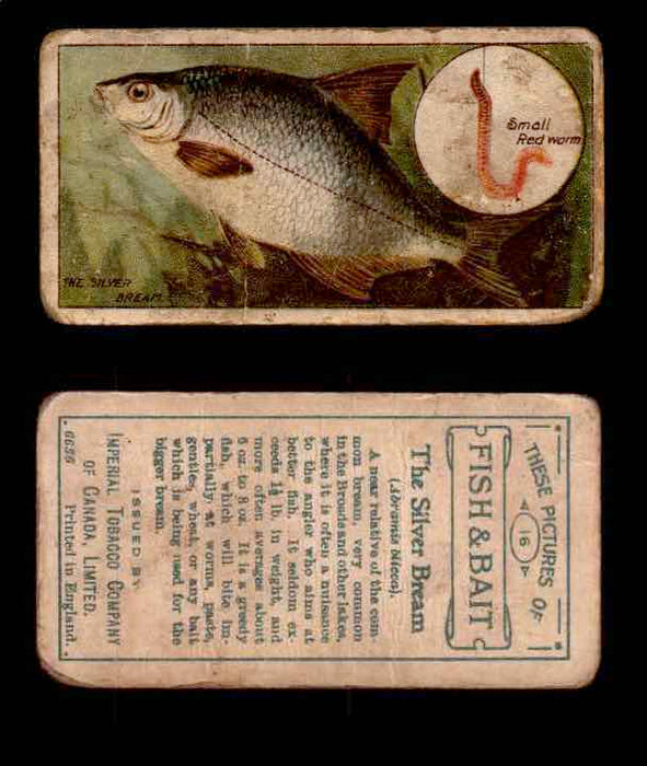 1910 Fish and Bait Imperial Tobacco Vintage Trading Cards You Pick Singles #1-50 #16 The Silver Bream  - TvMovieCards.com
