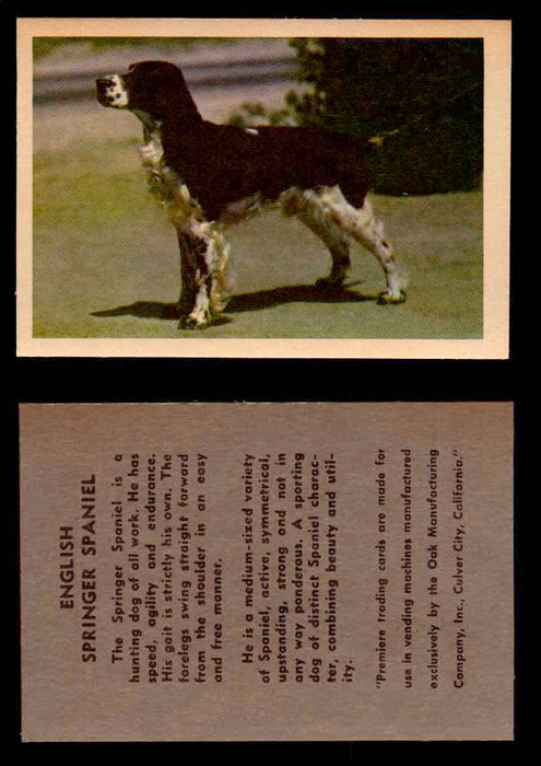 1957 Dogs Premiere Oak Man. R-724-4 Vintage Trading Cards You Pick Singles #1-42 #17 English Springer Spaniel  - TvMovieCards.com