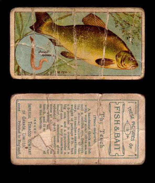 1910 Fish and Bait Imperial Tobacco Vintage Trading Cards You Pick Singles #1-50 #19 The Tench  - TvMovieCards.com