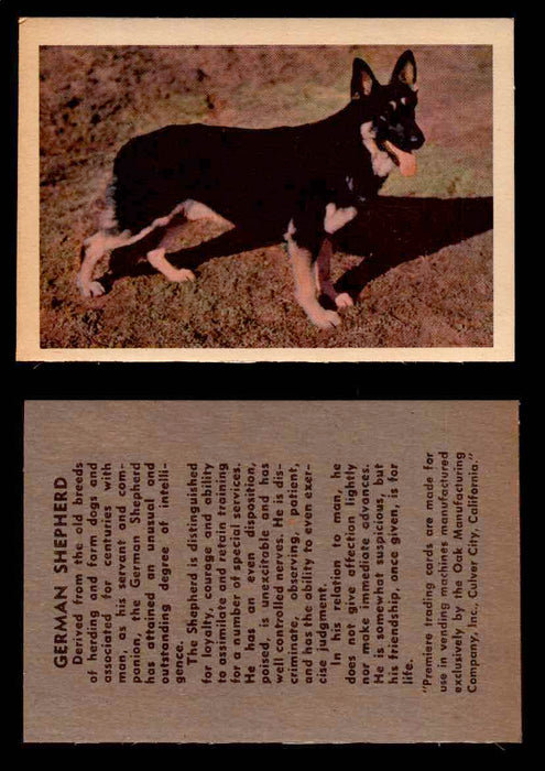 1957 Dogs Premiere Oak Man. R-724-4 Vintage Trading Cards You Pick Singles #1-42 #19 German Shepherd  - TvMovieCards.com