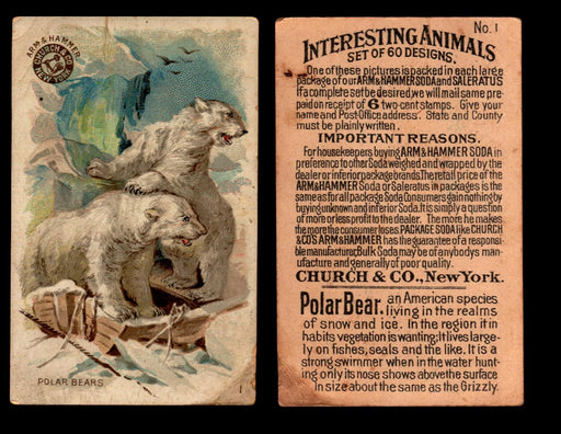 Interesting Animals You Pick Single Card #1-60 1892 J10 Church Arm & Hammer #1 Polar Bears  - TvMovieCards.com