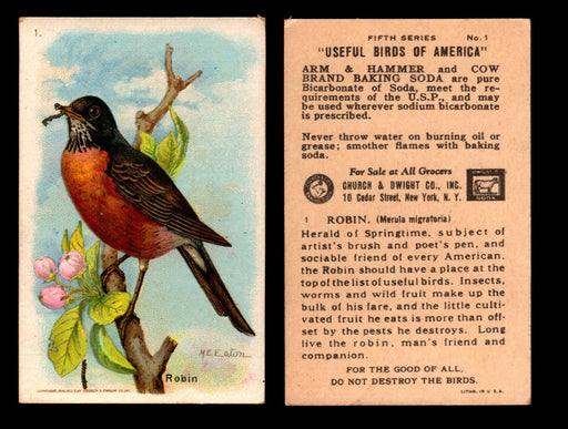 Birds - Useful Birds of America 5th Series You Pick Singles Church & Dwight J-9 #1 Robin  - TvMovieCards.com