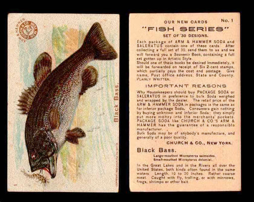 1900 Arm & Hammer Fish Series Vintage Trading Cards You Pick Singles #1-30 #1 Black Bass  - TvMovieCards.com