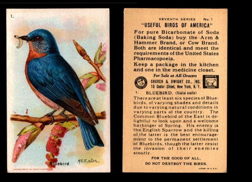 Birds - Useful Birds of America 7th Series You Pick Singles Church & Dwight J-9 #1 Bluebird  - TvMovieCards.com