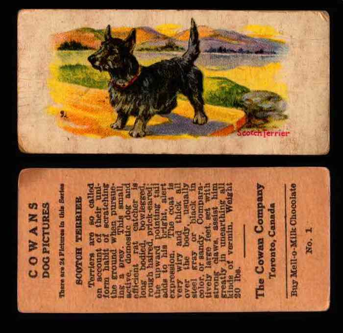 1929 V13 Cowans Dog Pictures Vintage Trading Cards You Pick Singles #1-24 #1 Scotch Terrier  - TvMovieCards.com