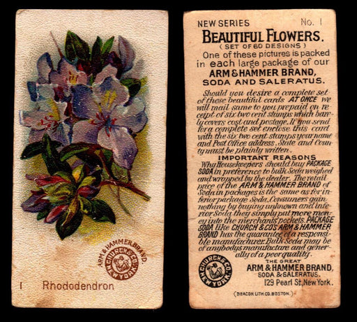 Beautiful Flowers New Series You Pick Singles Card #1-60 Arm & Hammer 1888 Small #1 Rhododendron  - TvMovieCards.com