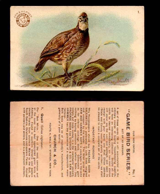 1904 Arm & Hammer Game Bird Series Vintage Trading Cards Singles #1-30 #1 Quail  - TvMovieCards.com