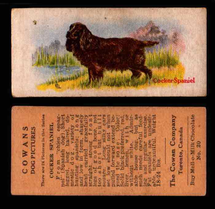 1929 V13 Cowans Dog Pictures Vintage Trading Cards You Pick Singles #1-24 #20 Cocker Spaniel  - TvMovieCards.com