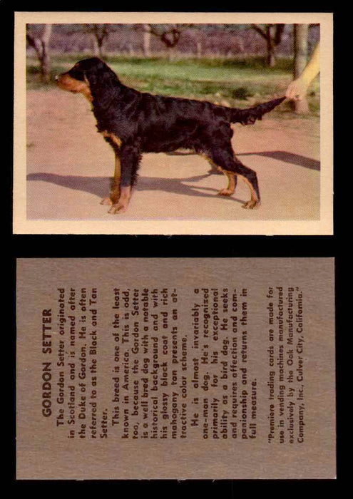 1957 Dogs Premiere Oak Man. R-724-4 Vintage Trading Cards You Pick Singles #1-42 #21 Gordon Setter  - TvMovieCards.com