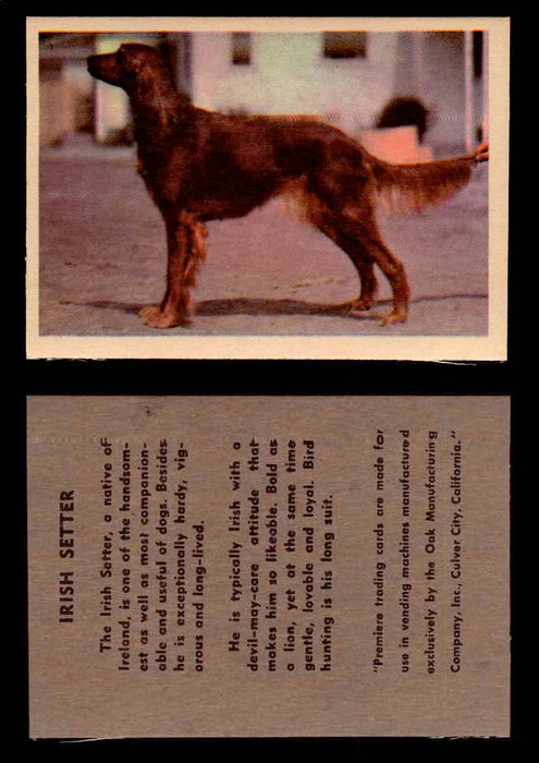 1957 Dogs Premiere Oak Man. R-724-4 Vintage Trading Cards You Pick Singles #1-42 #24 Irish Setter  - TvMovieCards.com