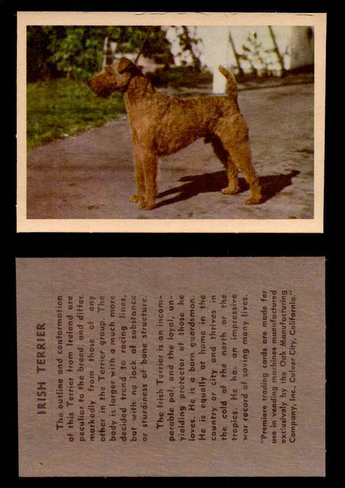 1957 Dogs Premiere Oak Man. R-724-4 Vintage Trading Cards You Pick Singles #1-42 #25 Irish Terrier  - TvMovieCards.com