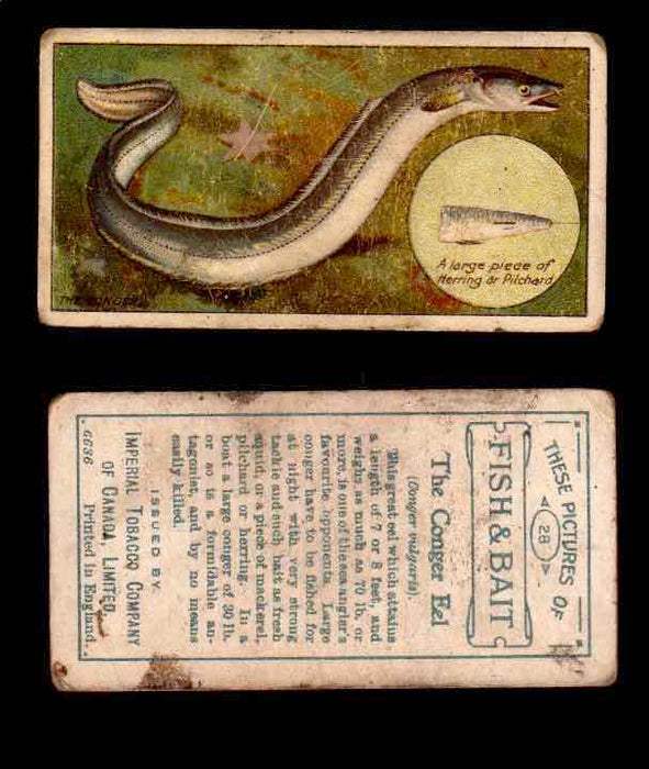 1910 Fish and Bait Imperial Tobacco Vintage Trading Cards You Pick Singles #1-50 #28 The Conger Eel  - TvMovieCards.com