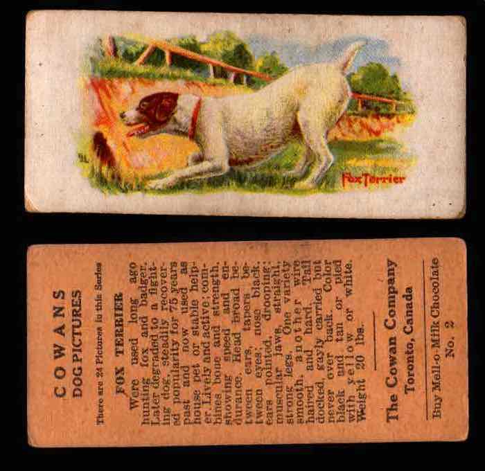 1929 V13 Cowans Dog Pictures Vintage Trading Cards You Pick Singles #1-24 #2 Fox Terrier  - TvMovieCards.com