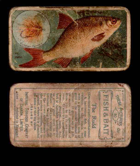 1910 Fish and Bait Imperial Tobacco Vintage Trading Cards You Pick Singles #1-50 #30 THe Rudd  - TvMovieCards.com